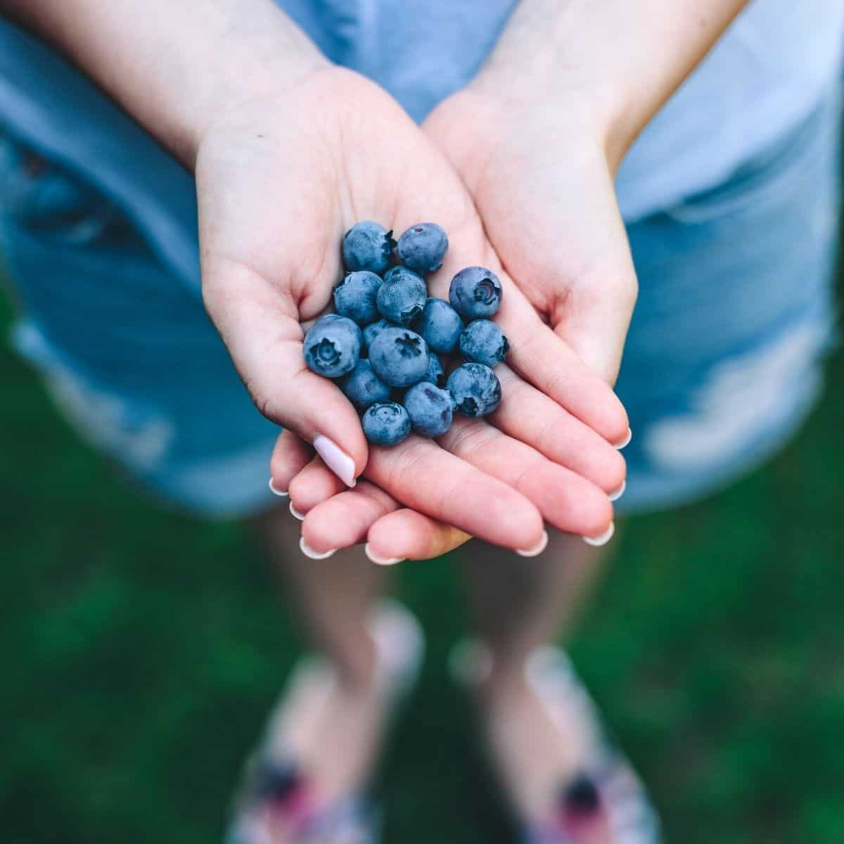 woman with blueberries in her hands