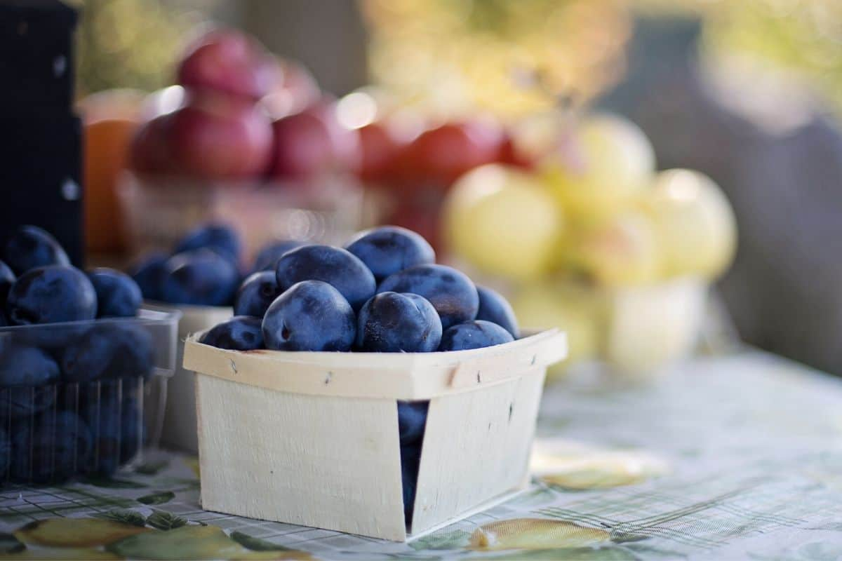 fruit at the farmers market