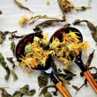 chamomile and other herbs on spoons